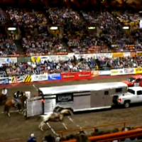 Video: How fast can they get it done? Ranch Rodeo