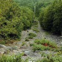 Happy Trails for riders and the Tennessee Gas Pipeline project