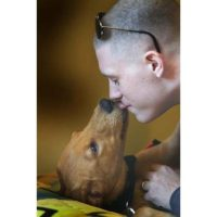 PTSD specialized service dog in training to help Marine