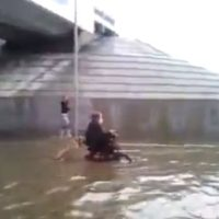Video: Dog in Russia pushes owner through flood